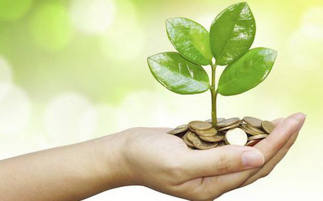 Cổ phiếu thưởng có phải là thu nhập đầu tư vốn?